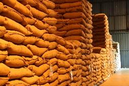 As sacas de soja estão armazenadas nos silos da Cotrijal, em Passo Fundo.